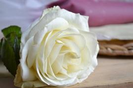 rose et poche à douille