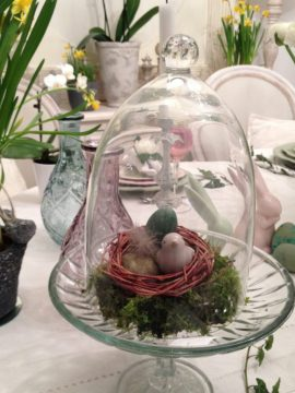 nid dans une cloche en verre