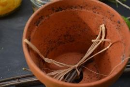 bridilles dans le pot