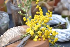 Cloche de Pâques et Mimosa