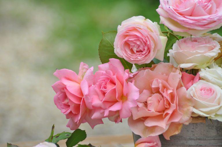 détail du bouquet de roses