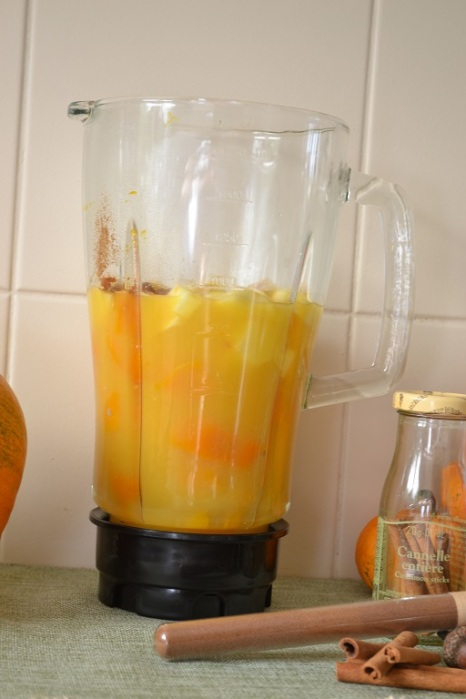 blender pour smoothie