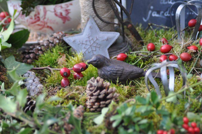 oiseau décoration