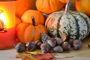 trésors d'automne