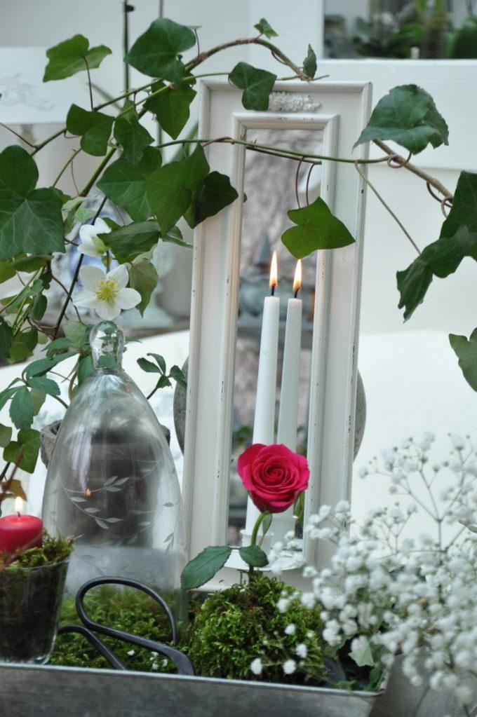 composition rose et végétaux