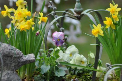 fleurs de printemps et couronne