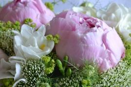 bouquet-pique-focus