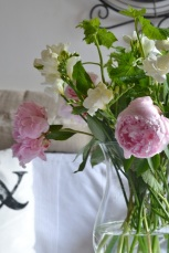 pivoines-fresias-cassissier-bouquet