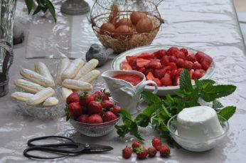 boudoirs, mascarpone et fraises