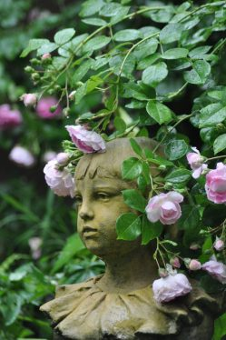 Dauphin et roses