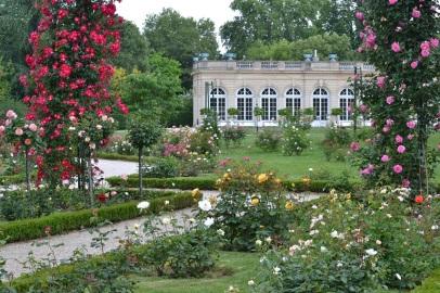 orangerie de Bagatelle