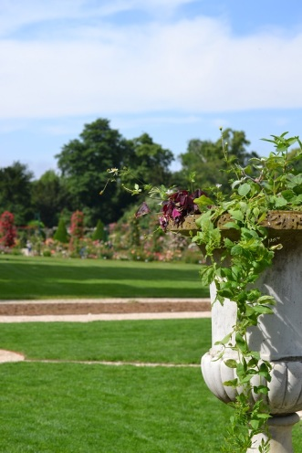 roseraie bagatelle vue de l'orangerie