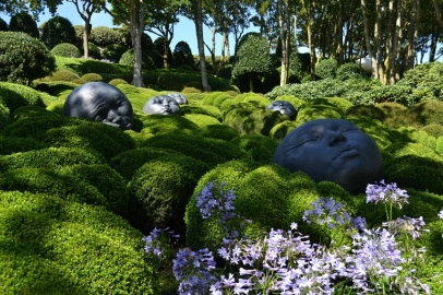 jardin-emotion