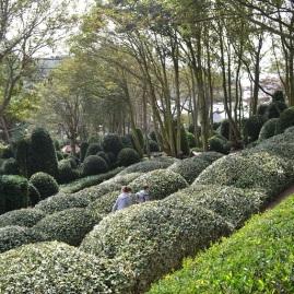 labyrinthe-avec-les-enfants