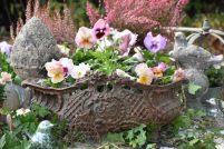 jardinière de pensées et déco