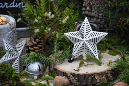 étoile au jardin