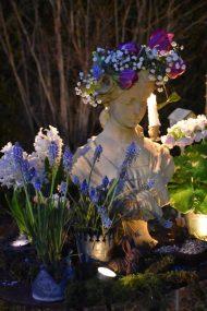 Jacinthes, buste et bougies