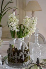 jacinthes et couronne