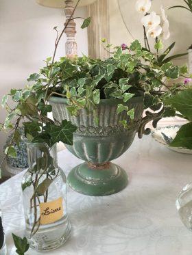 lierre panaché et vase Médicis vert
