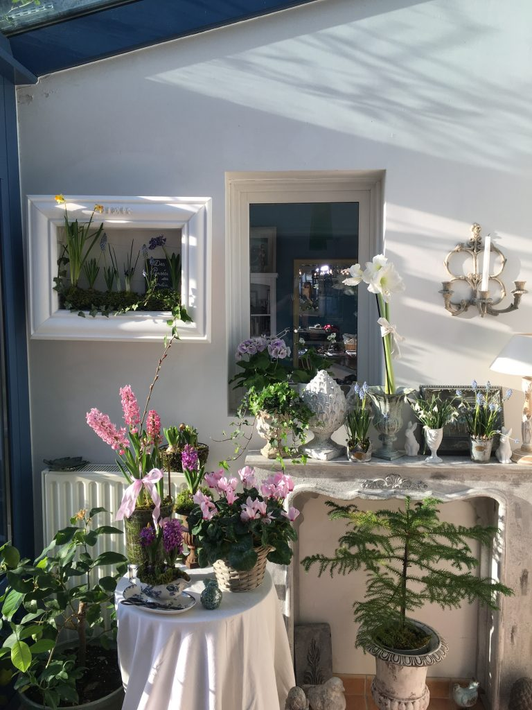 Plantes fleuries préférées des français