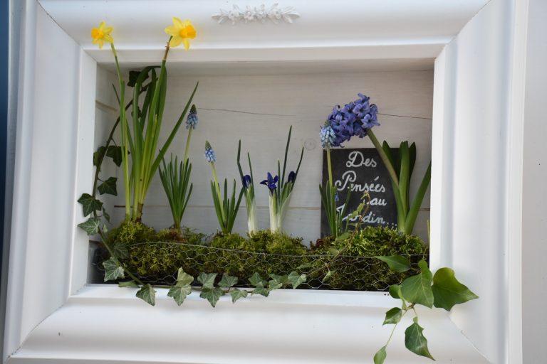Tableau fleuri jacinthe bleue
