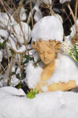 Aurore couronnée de neige