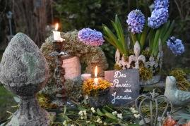 nuit-jacinthes-bleues