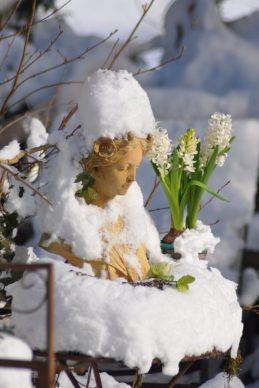 Aurore enneigée aux jacinthes