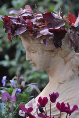 Profil d'Aurore en automne