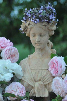 Coronnée de sauge et la vie en rose