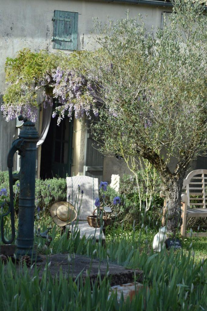 Pompe et olivier