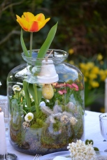 terrarium-fleurettes-printemps