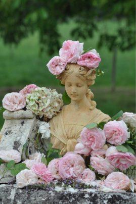 Flore de roses vétue
