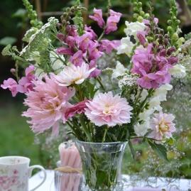 dahlia en bouquet