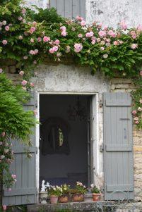 fenêtre entourée de roses Paul Noël