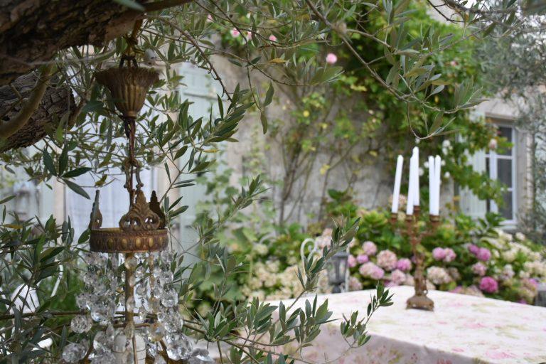 Lustre et olivier