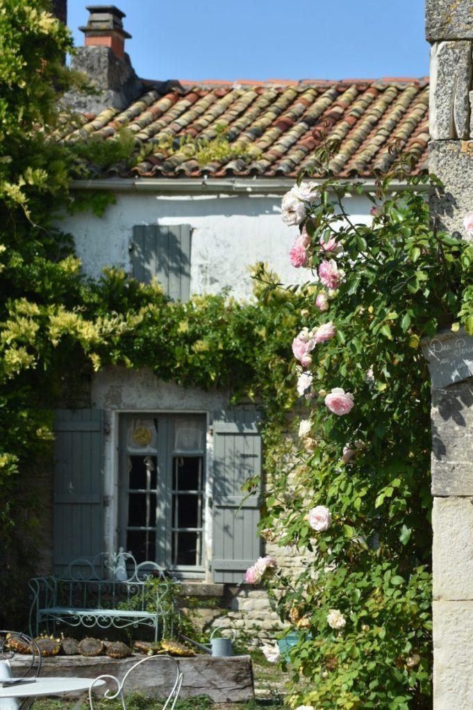 roses et maison